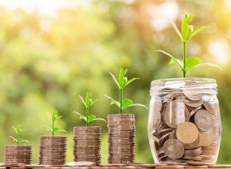 Verslo paramos priemonių – subsidijų apmokestinimas