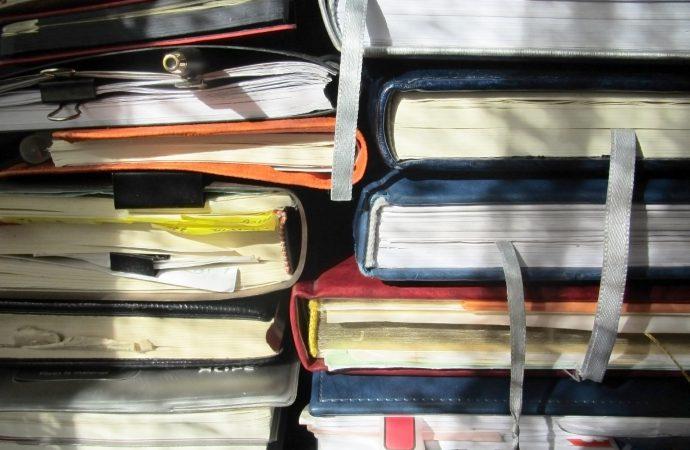 Buhalterinė apskaita: reforma, registrai ir vidaus kontrolė (antra dalis)